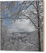 Winter Window Wonder Wood Print
