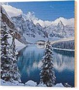 Winter wonder land Wood Print