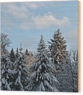 Winter Wonder Wood Print