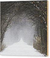 Winter Wonder Snow Tunnel Of Trees Wood Print