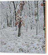Winter Wonderland 2 Wood Print