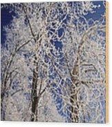 Winter Wonderland 7 Wood Print