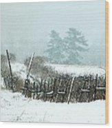 Winter Wonderland - Amazing Winter Landscape With Snow Falling Wood Print
