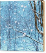 Winter Wonderland Wood Print by Brenda Schwartz
