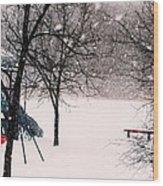 Winter Wonderland In Park Wood Print