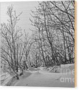 Winter Wonderland Monochrome Wood Print