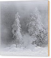 Winter Wonderland Of Yellowstone Wood Print