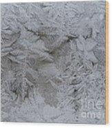 Winter Wonderland Series #01 Wood Print