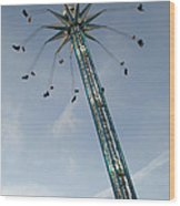 Winter Wonderland Star Flyer Wood Print