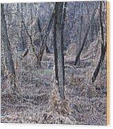 Winter Woods In Missouri 1 Wood Print