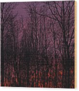 Winter Woods Sunset Wood Print