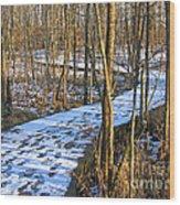 Winter Woods Walk Wood Print
