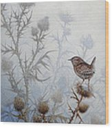 Winter Wren Wood Print