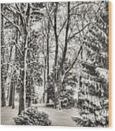 Winter Zauber 03 Wood Print