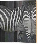 Winter Zebras Wood Print
