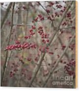 Winterberries Squared Wood Print