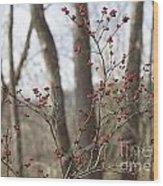 Winterberries Wood Print