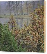 Winterberry In Fog Wood Print