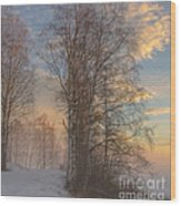 Winterday Wood Print by Sylvia  Niklasson