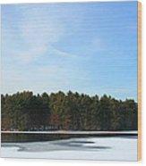 Wintergreen Winterfrost Wood Print