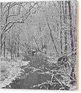 Winterlake Wood Print by Nancy Edwards