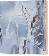 Winterland Wood Print