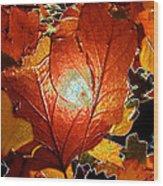 winters autumn in Pasadena Wood Print