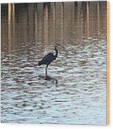Winter's Blue Heron Wood Print