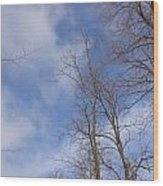 Winter's Blue Sky Wood Print
