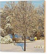 Winters Bradford Pear Wood Print