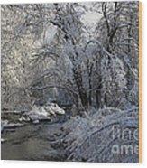 Winter's Canvas Wood Print