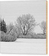 Winter's Cloak Wood Print
