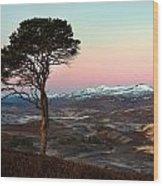 Winter's Dawn Wood Print