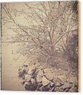 Winters Edge Wood Print