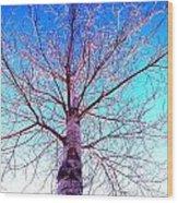 Winters Freeze Wood Print