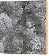 Winter's Gift Wood Print