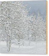 Winter's Glory - Grand Tetons Wood Print
