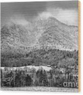 Winters Grace Wood Print