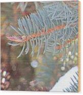 Winters Look Wood Print