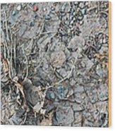 Winter's Mud Wood Print