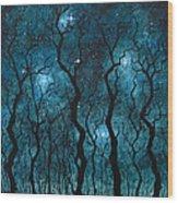 Winter's Night Wood Print