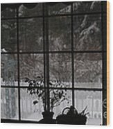 Winters Reflection Wood Print