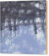 Winters' Shadow Wood Print