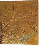 Winters Touch 2 Wood Print
