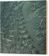 Winter's Work 3 Wood Print