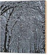 Winter's Work Wood Print