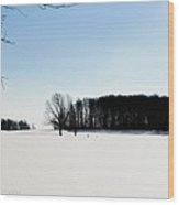 Winterscape 2  Wood Print by BandC  Photography