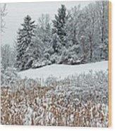 Winterscape Wood Print