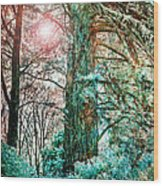 Wintersun Wood Print