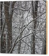 Wintery Day Wood Print